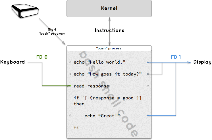 A process is a running program that can relays instructions to the kernel and has input and output connectors called FDs.